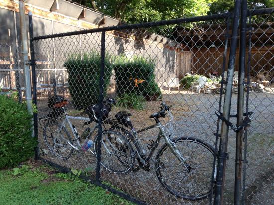 C&O Bicycle Shop: Locking the bikes up!