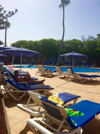 Apartamentos Fayna : Pool area - always able to get a sun lounger!