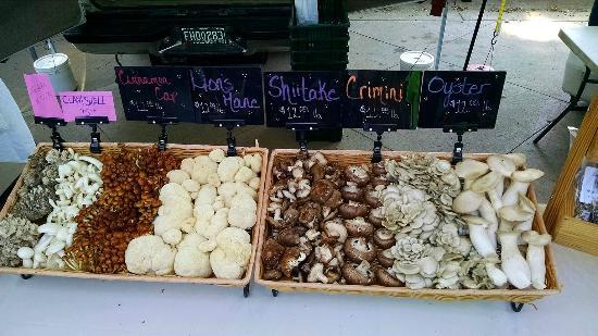 Boulder County Farmers Market