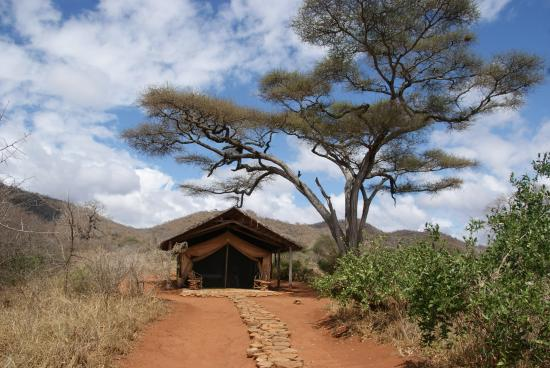 Mkomazi Game Reserve, แทนซาเนีย: One of the tents