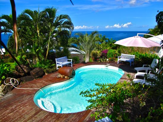 La piscine picture of bleu des iles deshaies tripadvisor for La piscine review