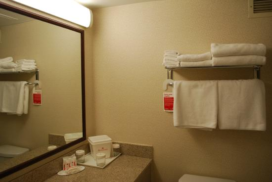Ramada Triangle/Quantico: Bathroom