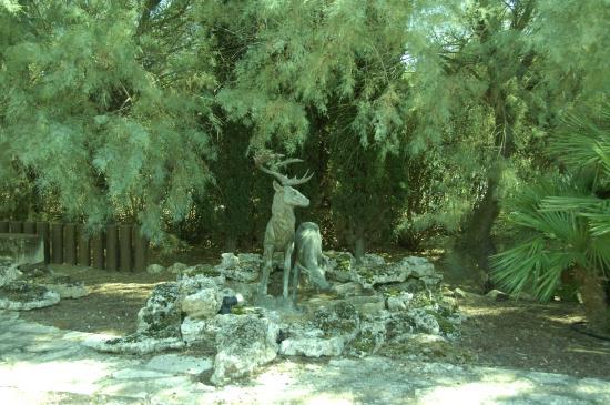 Oliveraie De Paul: un des nombreux bronzes