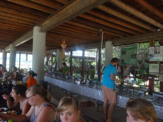 Elephant Nature Park: Lunch