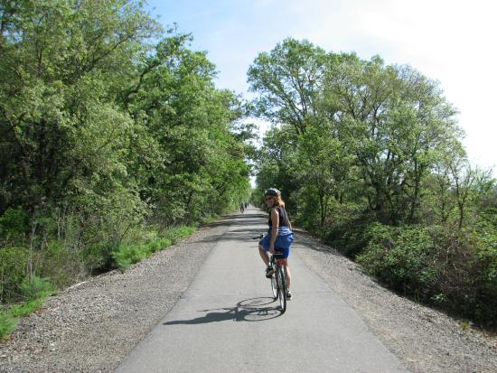 Joe Rodota Trail at Sonoma County Parks