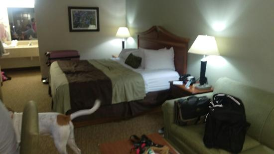 Best Western Inn of Brenham : Nice clean room