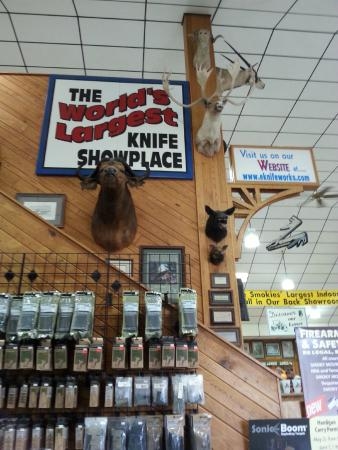 Sevierville Tn Kitchen Gadget Store