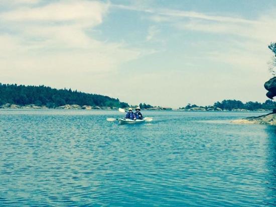 Shearwater Kayak Tours: Paddling along the finger islands