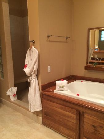 The Phoenix Resort: Master bath; loved soaking in the jacuzzi tub