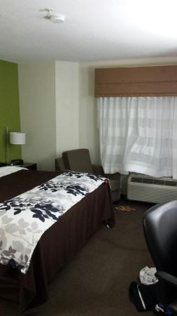 Sleep Inn & Suites near Outlets: Sleep Inn & Suites Myrtle Beach