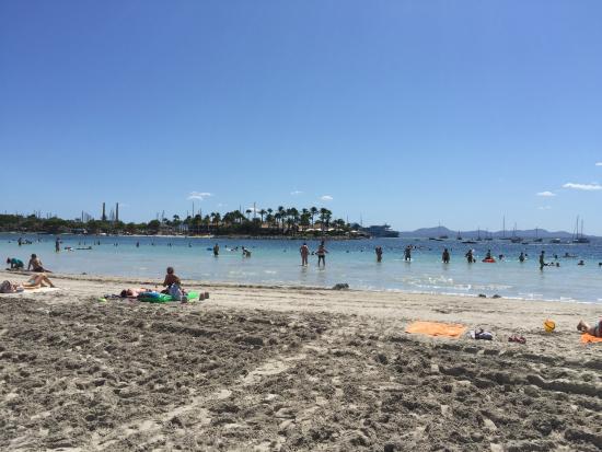 Море - Foto di Playa de Alcudia, Port dAlcudia - TripAdvisor