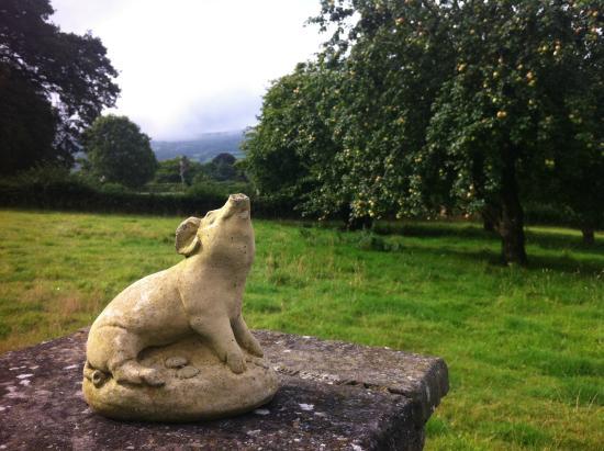 Porth-y-Berllan: the garden