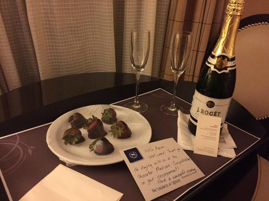 Sheraton Madison Hotel : Thanks Zoe for the fantastic service!