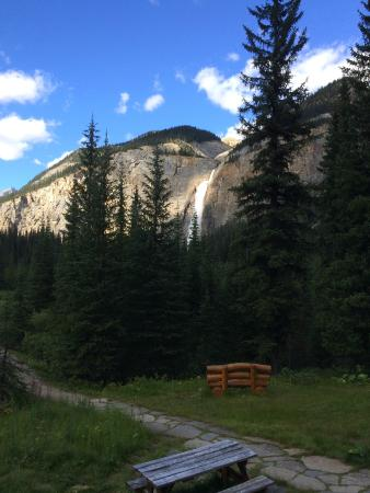 Whiskey Jack Hostel: This is the view of Takakkaw Falls from the front porch!