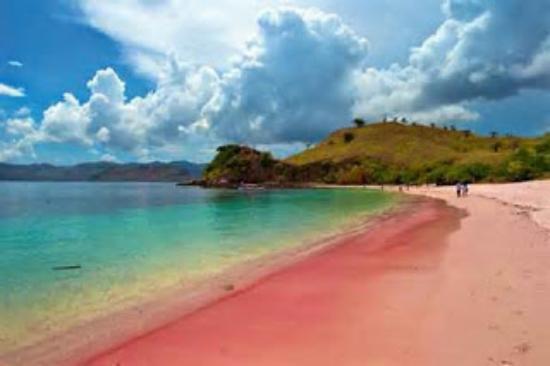 Pantai Pink Komodo