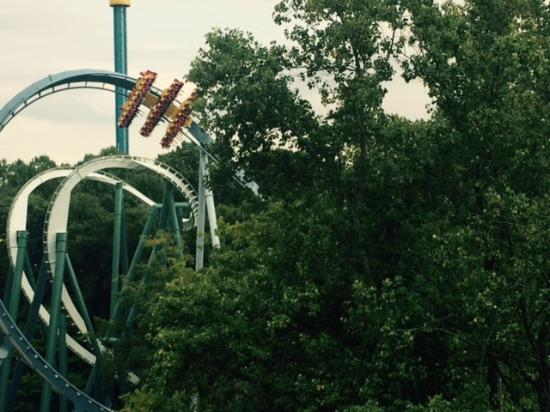 Rollercoaster Crepes Picture Of Busch Gardens