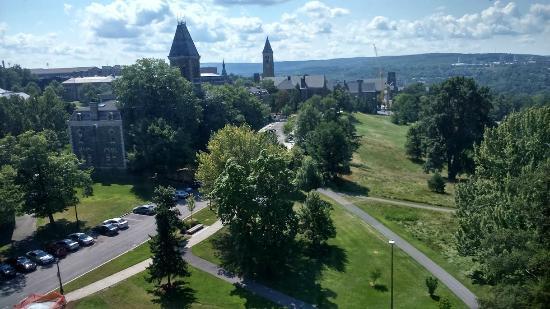 Johnson Museum of Art : vista geral de Cornell