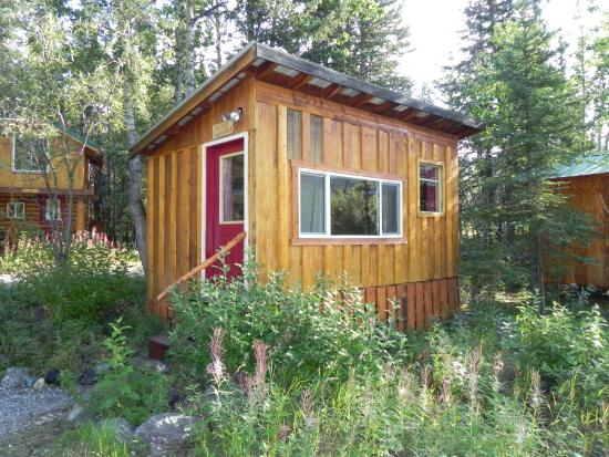 Denali Mountain Morning Hostel and Cabins : Our coffeegrinder cabin