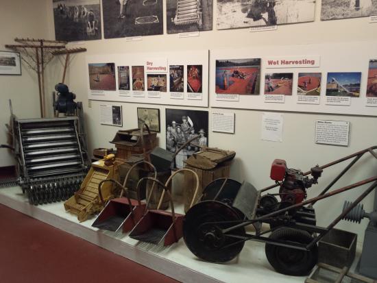 Cranberry Museum: Interior