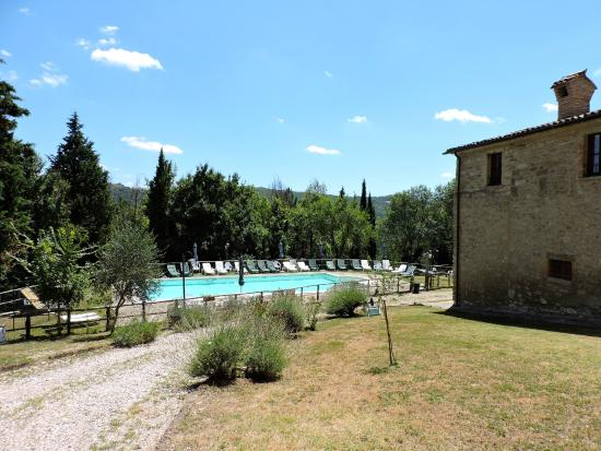 Le Valcelle Country House: Zona piscina