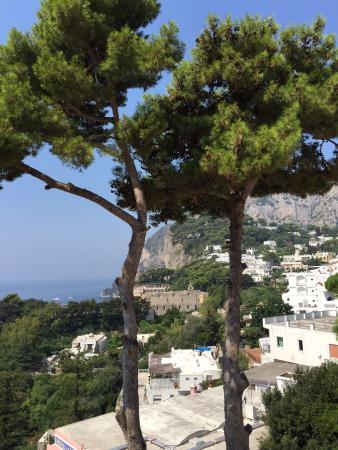 Casa Morgano: View from my balcony