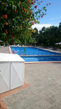 Amazonas Hotel: Sencillo