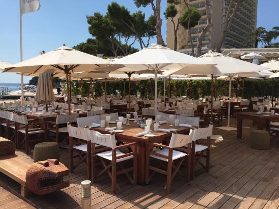 Nikki Beach Mallorca: photo4.jpg