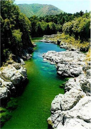 Nelson-Tasman Region, Νέα Ζηλανδία: Pelorus River