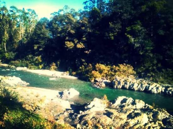 Nelson-Tasman Region, Νέα Ζηλανδία: Pelorus swimming