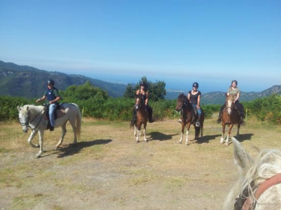 Equestrian Farm  A Conca d'Orezza