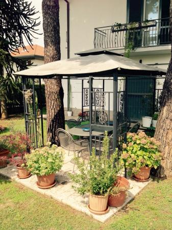 Evergreenitalia B&B: Splendido giardino!
