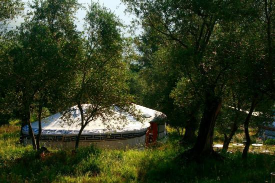 Coaraze, France: Les Yourtes du Soleil