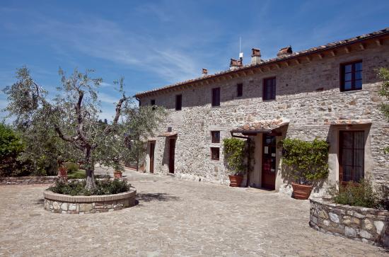 Montefiridolfi, Italia: Fonte de' Medici