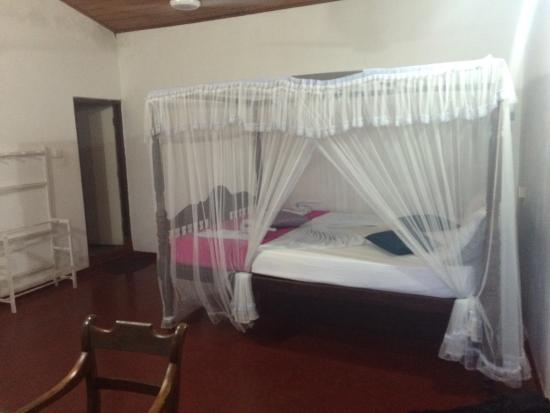 Frangipani Motel: photo0.jpg