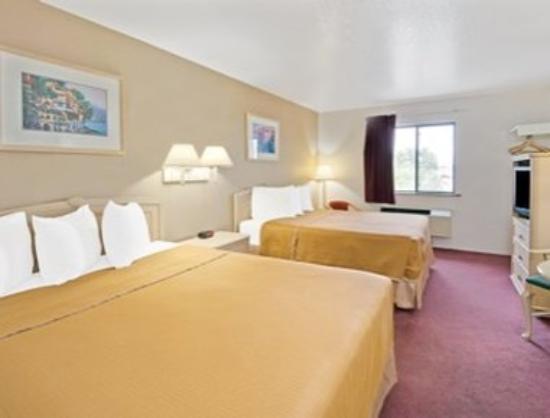 Super 8 Albuquerque/Midtown : Standard Two Queen Beds Room