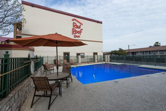 Red Roof Inn Austin North: Pool