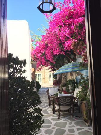 Batistas Apartments: Il giardinetto !!!