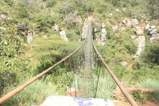 Masai Lodge: Kitengela glass bridge, a thrilling experience