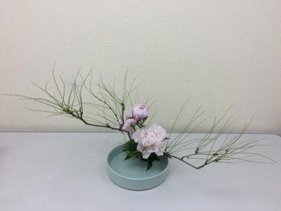 Sogetsu Ikebana Japanese Flower Arrangement For Tourist
