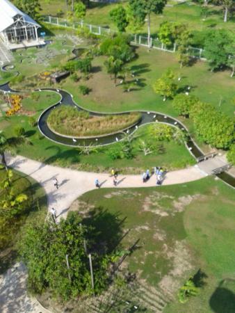 Mangal das Garcas: Vista a partir do observatório para o parque