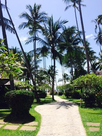 Lipa Noi, Thailand: Nikki Beach Resort Koh Samui