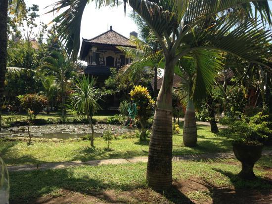 Swan Inn: Garten