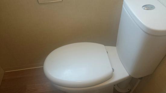 Trenance Holiday Park: Toilet, shame I can't capture smell on camera yet.