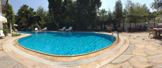 Central Park Hotel : The pool