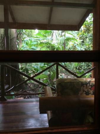 Pachira Lodge: photo0.jpg
