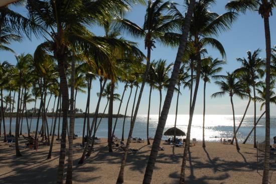Grand Bahia Principe La Romana: Bp La Romana Beach