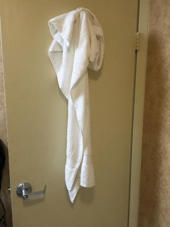 Baymont Inn & Suites Indianapolis East: Dirty towel