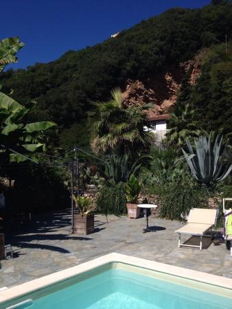La Musa Guest House: photo7.jpg