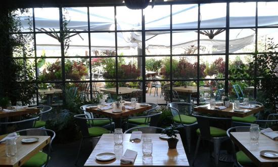 The garden and terrace picture of terrain garden cafe for Garden cafe designs