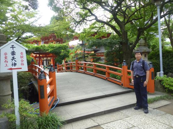 Chiba Shrine: ศาลเจ้า Chiba